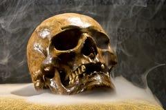 Istna czaszka Zdjęcia Royalty Free