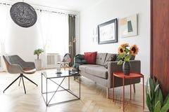 Istna fotografia elegancki żywy izbowy wnętrze zdjęcia stock
