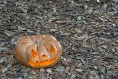 Istna pomarańczowa Halloween bania z cyzelowaniem zdjęcia royalty free