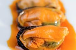 Istny mussel Zdjęcie Stock