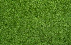 Istny zielonej trawy pole zdjęcie stock