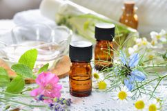 Istotni oleje i ziołowi kosmetyki obrazy royalty free