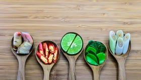 Istotni składniki Tom Yum, Tajlandia fomous jedzenie obraz royalty free