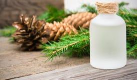 Istotny aromatyczny nafciany świerkowy zbliżenie z jedlinowym drzewem i sosnowym przeciwem Zdjęcia Stock
