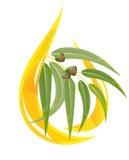 istotny eukaliptusowy olej ilustracji
