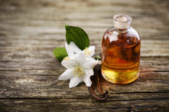 istotny olej obrazy stock