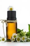 Istotny olej, opróżnia etykietki i chamomile Zdjęcia Stock