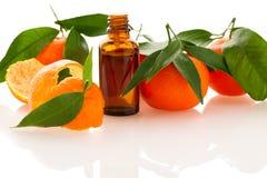 Istotny olej pomarańczowa mandarynka cytrusa owoc w małym butelka d Obraz Stock