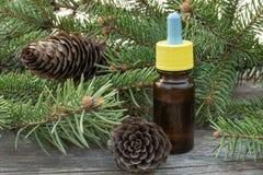 Istotny olej sosna w szklanej butelce z iglastą sosną opuszcza na stole zdjęcia royalty free