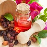 Istotny olej w szklanej butelce, wysuszone biodro jagody w drewnianym Zdjęcia Stock