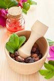 Istotny olej w szklanej butelce, wysuszonych biodro jagodach, i wzrastał h Obrazy Stock