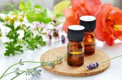 Istotny olej z ziołowym kwiatem Fotografia Stock