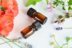 Istotny olej z ziołowym kwiatem Zdjęcie Stock