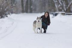 Istoty ludzkiej i zwierzęcia domowego związków pojęcia Portret Urocza Kaukaska brunetki kobieta Wraz z Jej Łuskowatym psem Fotografia Stock