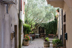 Istrian courtyard Royalty Free Stock Photography