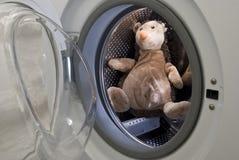 Istrice del giocattolo in lavatrice Fotografie Stock