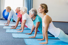 Istruttore che esegue yoga con gli anziani fotografia stock libera da diritti