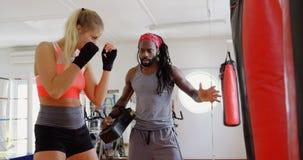 Istruttore che forma pugile femminile nello studio 4k di forma fisica stock footage