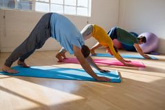 istruttore con gli studenti che praticano posa orientata verso il basso del cane nello studio di yoga Fotografia Stock