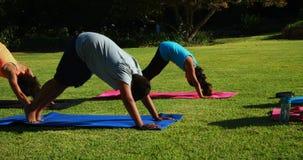 Istruttore di yoga che istruisce i bambini nell'esercitarsi archivi video