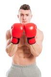 Istruttore muscolare ed adatto di pugilato immagini stock libere da diritti