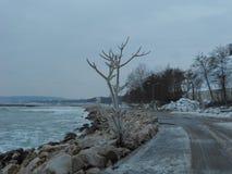Istruzione del ghiaccio sulla spiaggia Fotografia Stock