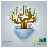 Istruzione globale con il concetto creativo Infographic del diagramma ad albero illustrazione vettoriale