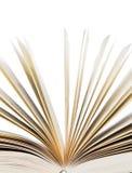 Istruzione, scienza. Vecchio libro su fondo bianco Fotografie Stock