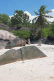 Istruzioni del basalto in tropici Baie Lazare, Mahe, Seychelles Fotografie Stock