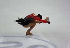 ISU World Figure Skating Championships 2010 Stock Image