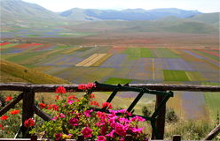 Itália - Úmbria - Castelluccio Fotografia de Stock