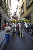 Itália, Toscânia, Florença Fotos de Stock Royalty Free