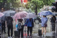It's che piovono di mattina ed i pedoni che camminano tramite la strada passano tramite l'intersezione fotografie stock