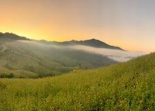 Fog over the hills stock photos