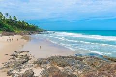 Itacareaard en strand in Bahia royalty-vrije stock foto