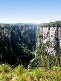 Itaimbezinho jar - Brazylia Fotografia Stock