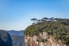 Itaimbezinho-Schlucht bei Aparados DA Serra National Park - Cambara tun Sul, Rio Grande tun Sul, Brasilien Lizenzfreies Stockfoto