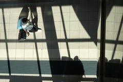 Italië, Emilia Romagna, Guglielmo Marconi Airport van Bologna stock fotografie