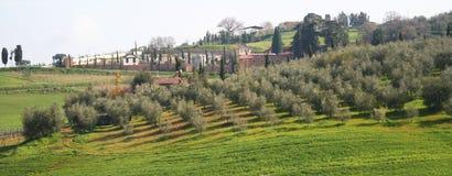 Italië. Het gebied van Toscanië, de vallei van Val D'Orcia Royalty-vrije Stock Foto's