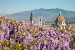 Italië, Toscanië, Florence, de Bardini-tuin stock afbeeldingen