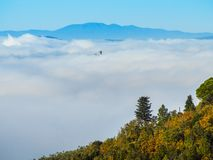Italië, Toscanië, Florence met mist, stock foto