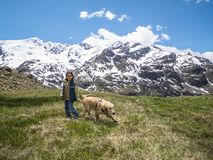 Italia, Lombardía, montañas, perro de perrito del golden retriever en montaña yo Imagenes de archivo