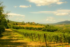 Picture from Tuscany royalty free stock image