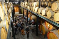 Italia, Piamonte, Langhe, turistas del vino en el ` de Cascina Monfalletto del ` fotografía de archivo