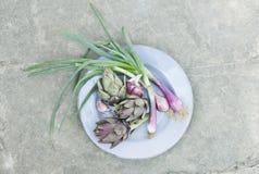 Italia, Toscana, Magliano, alcachofas y cebollas de la primavera en placa Fotografía de archivo libre de regalías