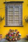 Italia, Toscana, provincia de Lucca, Lucca fotografía de archivo libre de regalías