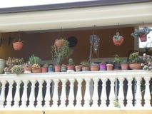 Italiaans balkon met ingemaakte installaties stock foto's