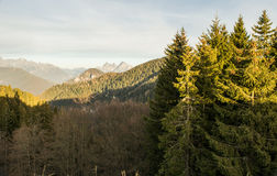 Italiaans Dolomiet Trento Stock Foto