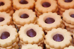 Italiaans gebakje - koekje met chocolade stock fotografie