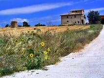 Italiaans landbouwbedrijf stock foto's